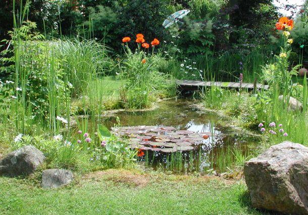 gartenteich anlegen: so schaffen sie ihr eigenes mini-biotop, Gartenarbeit ideen