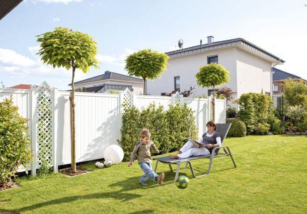 Ob baum oder anbau die nachbarn entscheiden mit for Gartengestaltung abgrenzung zum nachbarn